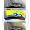 Low-altitude Terrestrial Spectroscopy from a Pushbroom Sensor